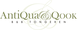 AntiQua and Qook